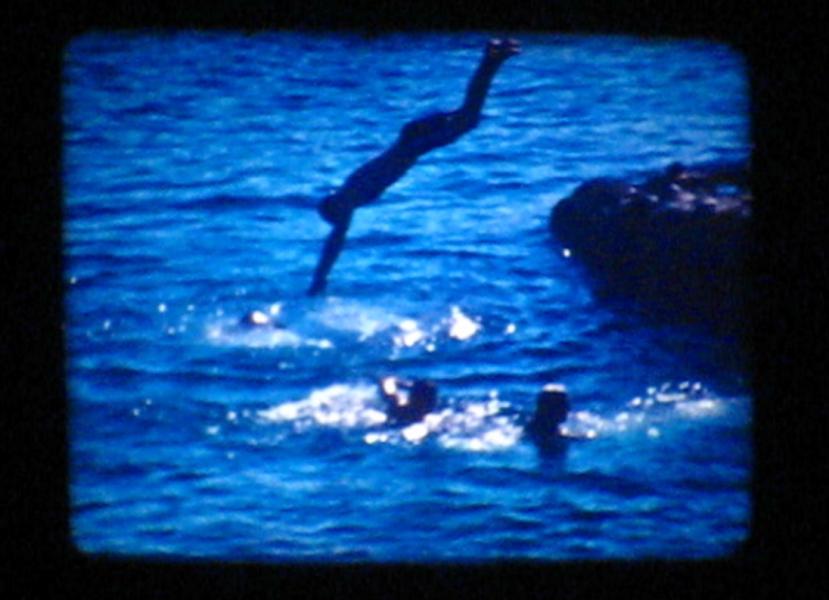 Diving Film, 2013