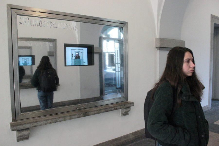 Wunderkammer(a), 2019