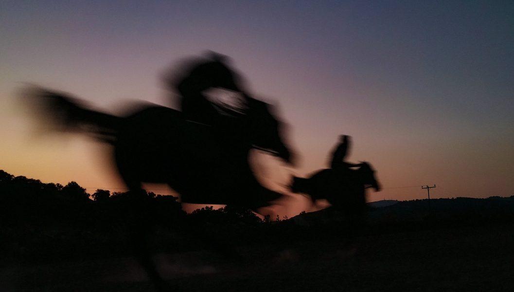 HORSES, 2021